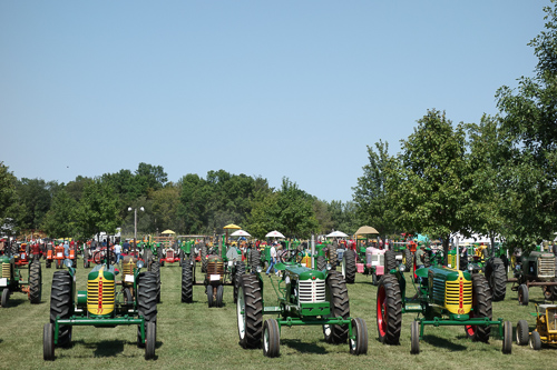 Field of Antique Tractors