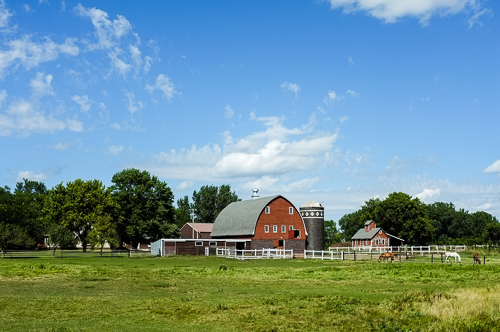 Summertime Farmscape