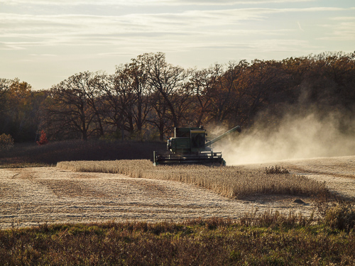 Fall 2012 Harvest