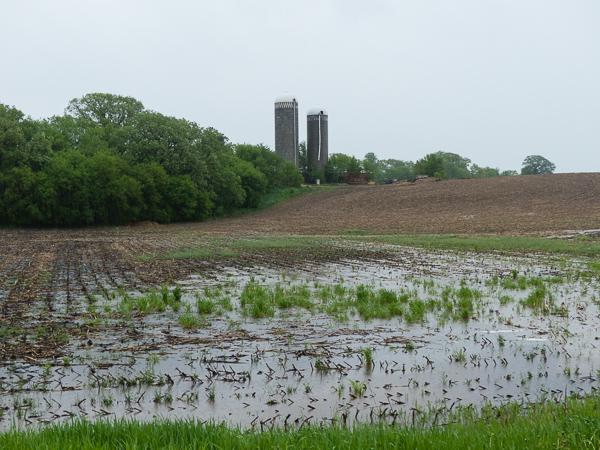 Wet Spring 2014