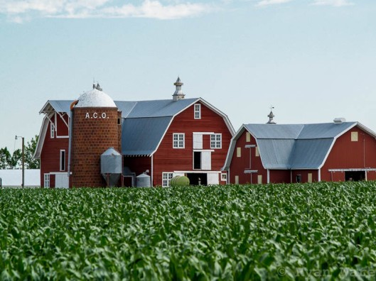 Twin Barns and ACO Silo